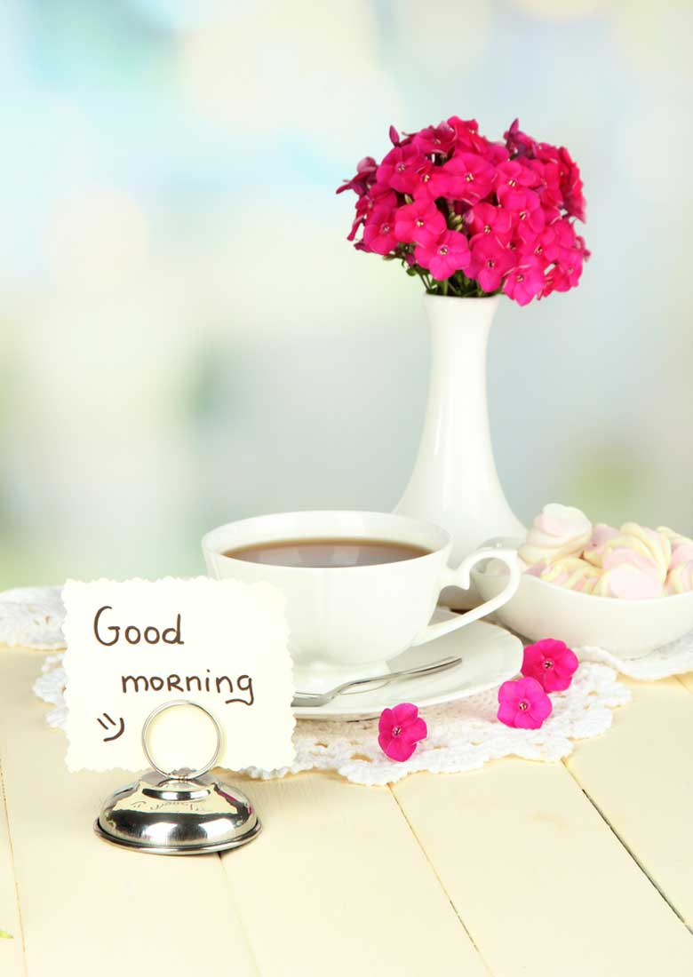 Good Morning With Nice Flower