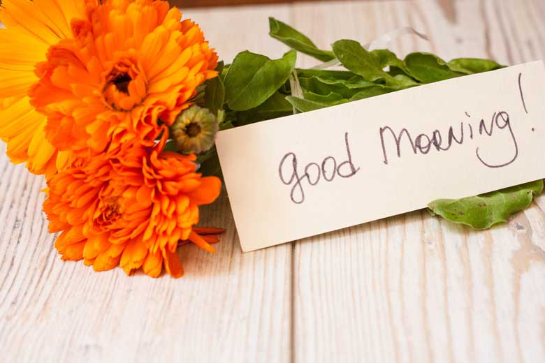Good morning Wishes With flowers image