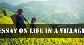 Essay on Life In A Village
